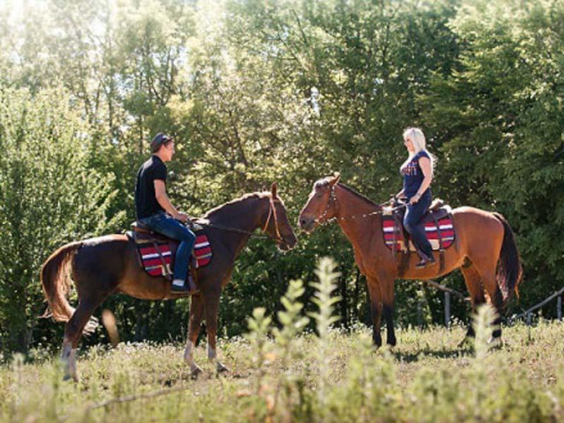 Подарок прогулка на лошади